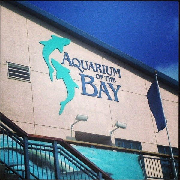 Foto tirada no(a) Aquarium of the Bay por Betty B. em 4/6/2013