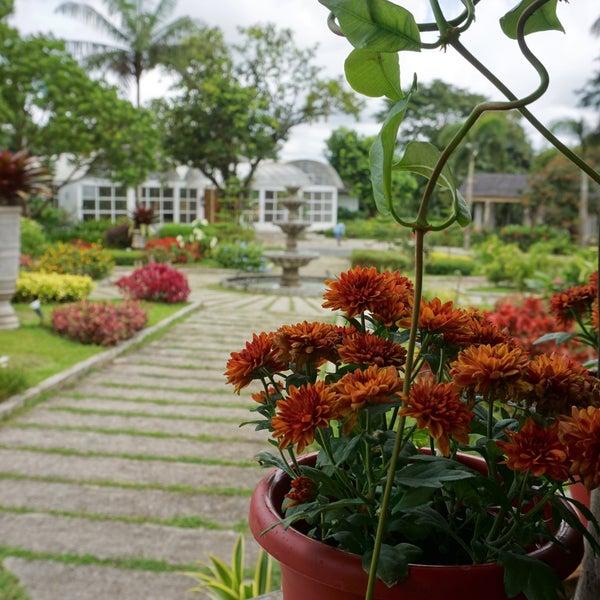 Ming S Garden Restaurant Quezon City District 1 2 Tips From 11 Visitors