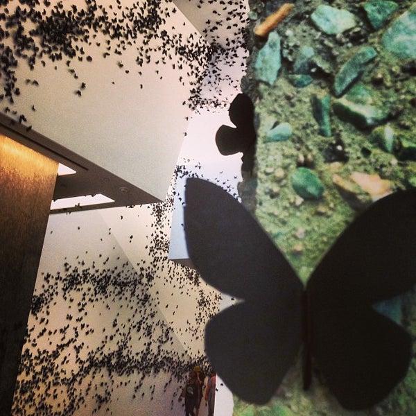 Das Foto wurde bei Phoenix Art Museum von Danielle M. am 7/22/2013 aufgenommen