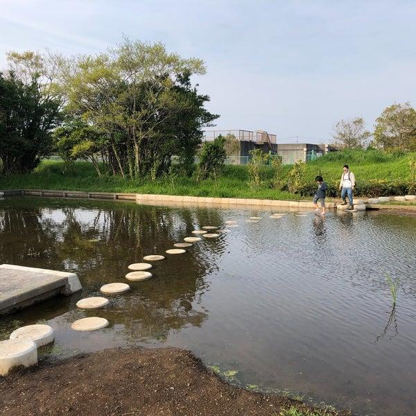手賀沼フィッシングセンター - 柏市の釣り場