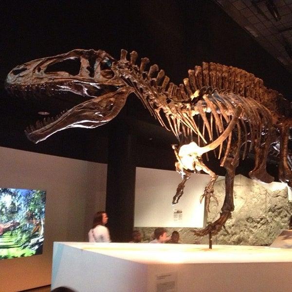 Foto scattata a Houston Museum of Natural Science da Chris il 5/24/2013