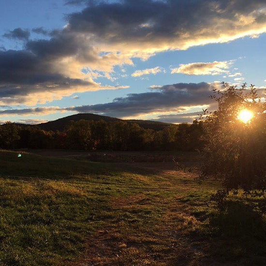 Снимок сделан в Fishkill Farms пользователем Dana Storm S. 10/19/2015