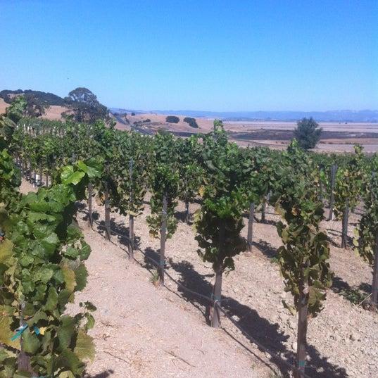 รูปภาพถ่ายที่ Ram's Gate Winery โดย Donna B. เมื่อ 10/1/2012
