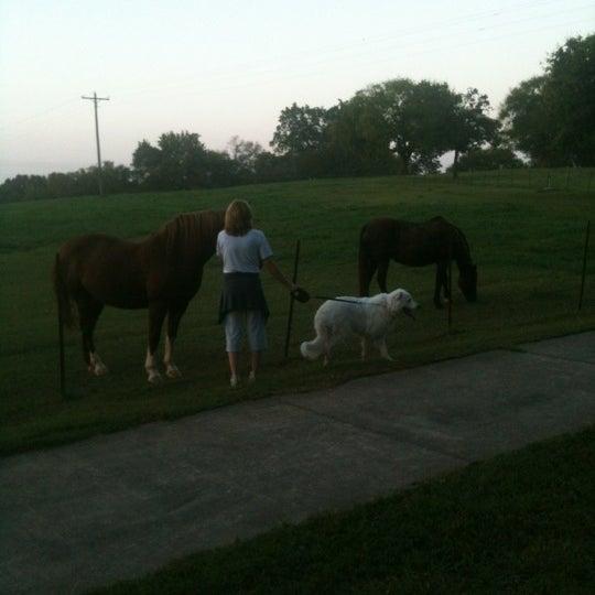 Foto scattata a Anne Springs Close Greenway da Chantelle M. il 9/26/2012