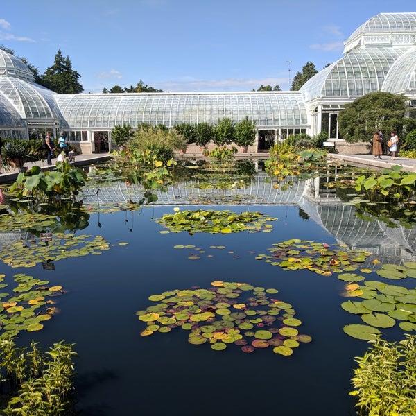 Monet 39 s garden at the new york botanical garden bronx - New york botanical garden parking ...