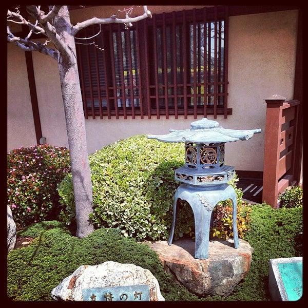 3/19/2013にChuck D.がJapanese Friendship Gardenで撮った写真