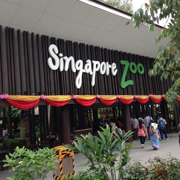 Foto tirada no(a) Singapore Zoo por Стас К. em 1/13/2013