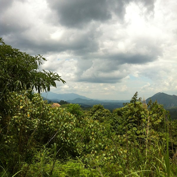 The Gunung Inas Forest Reserve.