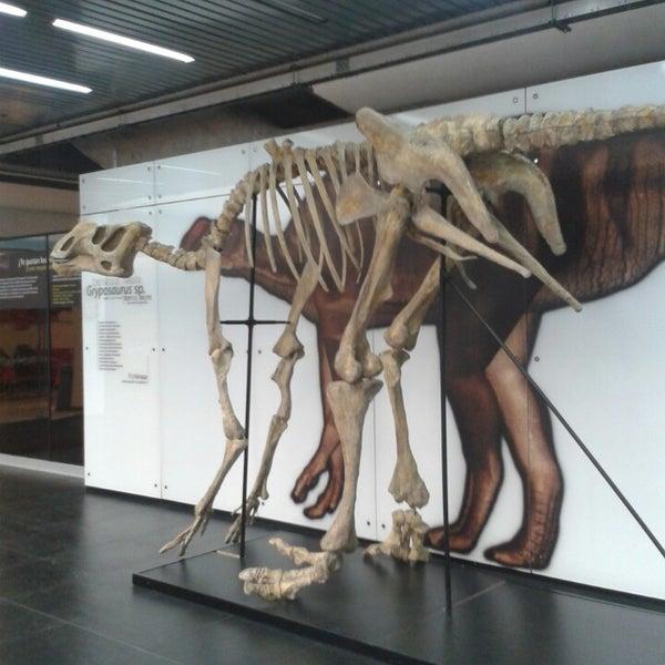 รูปภาพถ่ายที่ Universum, Museo de las Ciencias โดย Claudia P. เมื่อ 6/23/2013