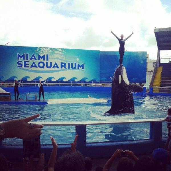 12/2/2012에 Carlos A.님이 Miami Seaquarium에서 찍은 사진