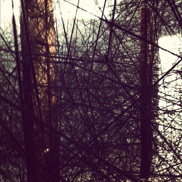 Foto scattata a CCC Strozzina da Fabrizio P. il 12/16/2012