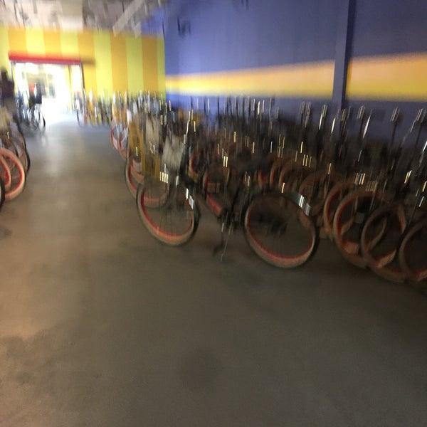 7/14/2017にMargaret F.がFreeWheelin' Bike Toursで撮った写真