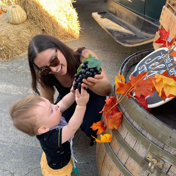 Das Foto wurde bei Larson Family Winery von Liz O. am 10/13/2019 aufgenommen