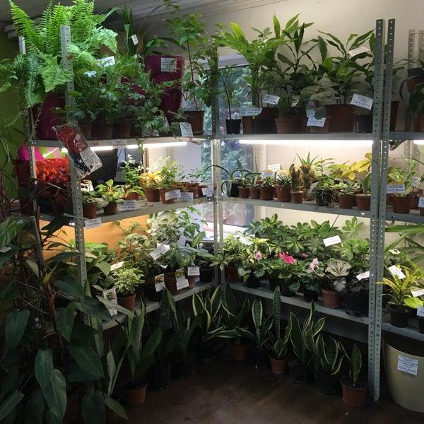 Магазин Ботанического Сада В Минске Каталог