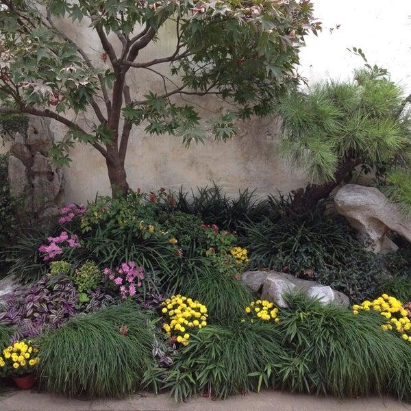 Resultado de imagem para jardim em Xiaoxinqiao