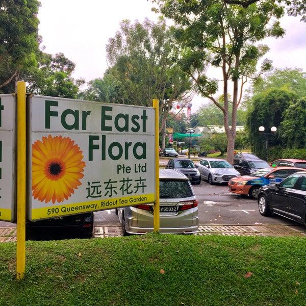 Far East Flora @ Queensway -Plant Boutiques Singapore