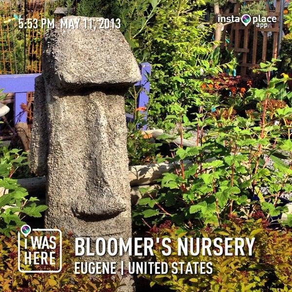 Bloomer S Nursery Flower In Eugene