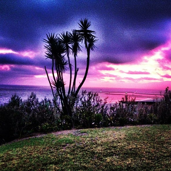Neighborhood In Playa Del Rey