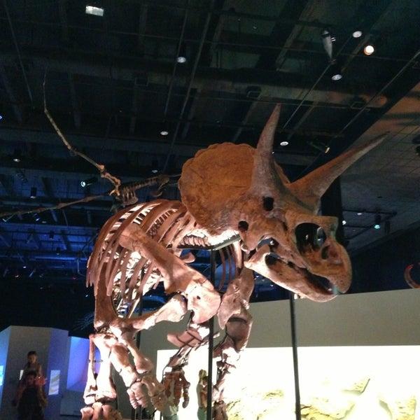 Foto scattata a Houston Museum of Natural Science da Juan Carlos T. il 7/7/2013
