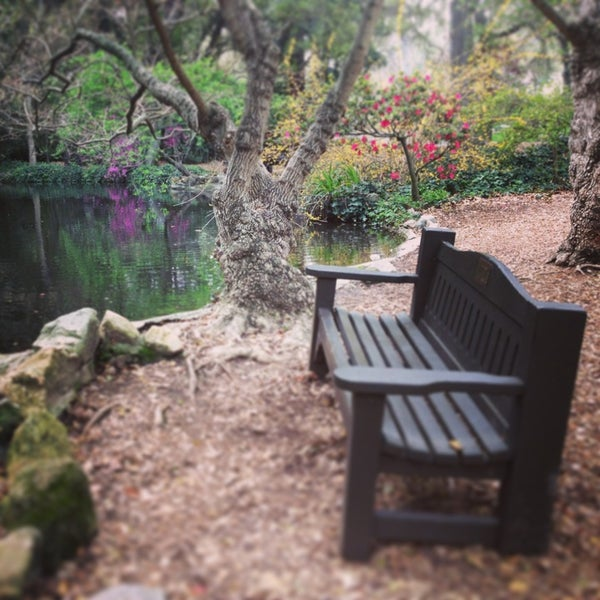 3/20/2013 tarihinde Mackie T.ziyaretçi tarafından Descanso Gardens'de çekilen fotoğraf