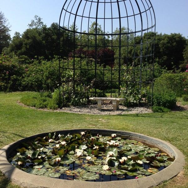 4/28/2013 tarihinde Jessica W.ziyaretçi tarafından Descanso Gardens'de çekilen fotoğraf