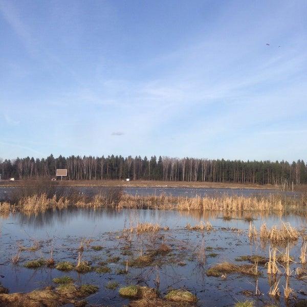 Снимок сделан в Озеро Черное в Брёхово пользователем Фея Анюта 4/9/2017