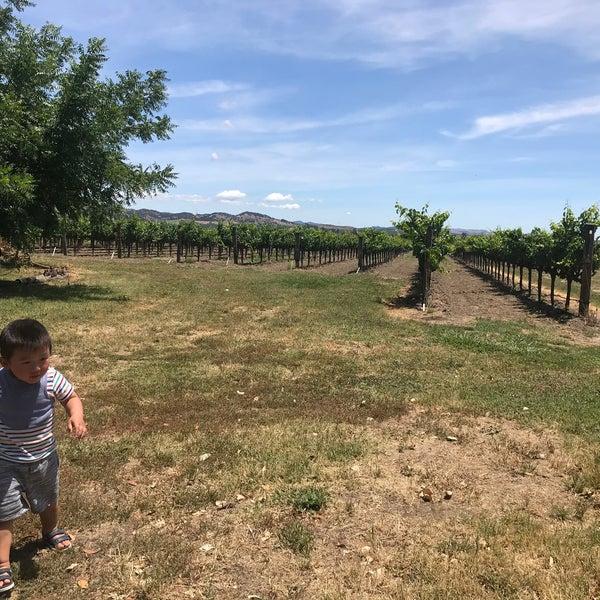 Das Foto wurde bei Larson Family Winery von Mark am 6/14/2020 aufgenommen