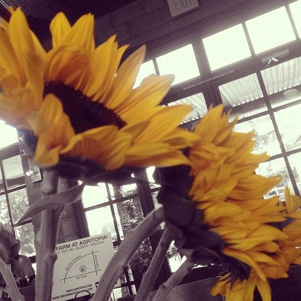 Das Foto wurde bei The Coffee Shop at Agritopia von dawn b. am 6/7/2013 aufgenommen