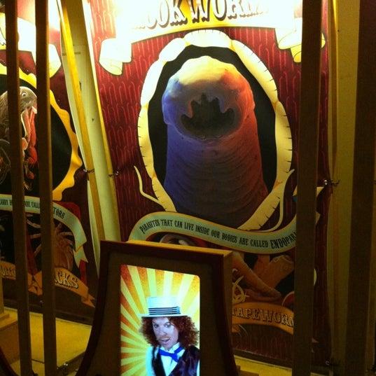 Foto tirada no(a) Las Vegas Natural History Museum por Bennett C. em 11/19/2012