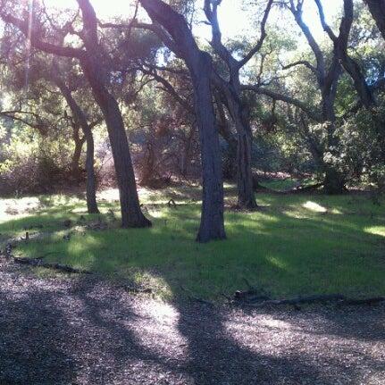 11/24/2012 tarihinde John H.ziyaretçi tarafından Descanso Gardens'de çekilen fotoğraf