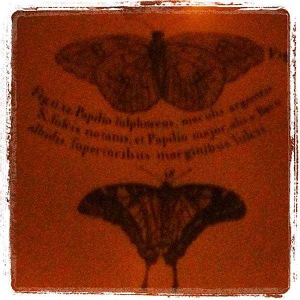 Foto tomada en The Botanist por Craig C. el 11/20/2012