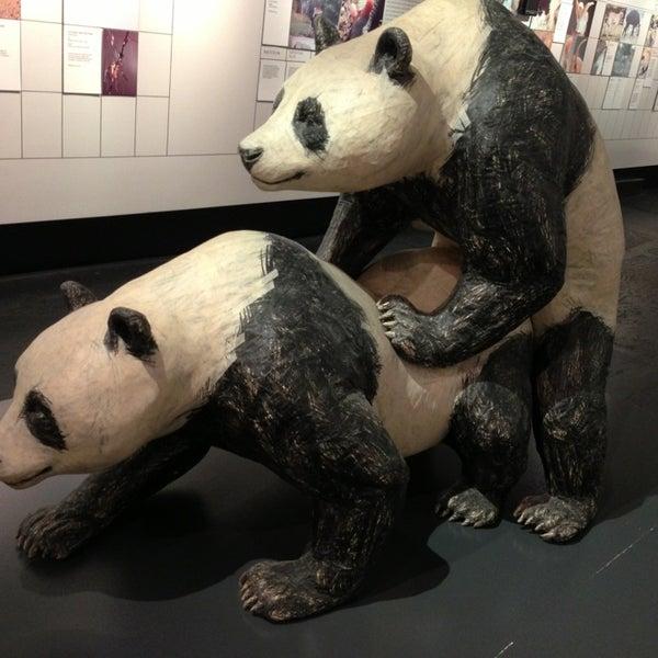 5/24/2013에 Ray L.님이 Museum of Sex에서 찍은 사진