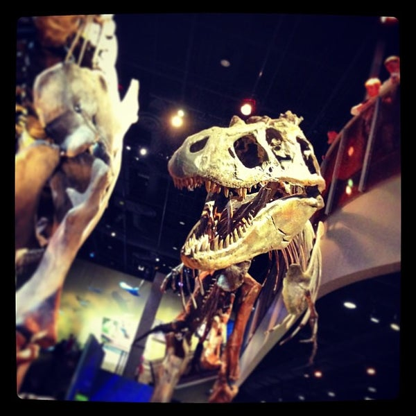 Foto tirada no(a) Perot Museum of Nature and Science por Michelle M. em 12/29/2012