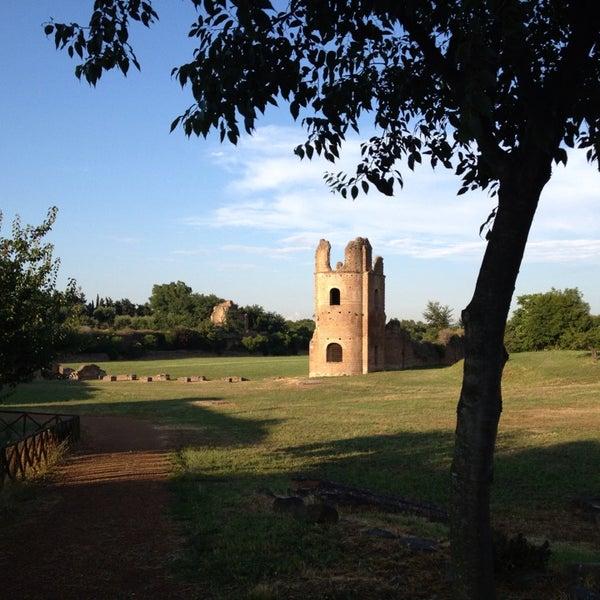 7/6/2013にPietro G.がParco Regionale dell'Appia Anticaで撮った写真