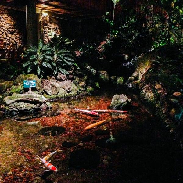 9/17/2013에 Patricia C.님이 Duke's Kauai에서 찍은 사진