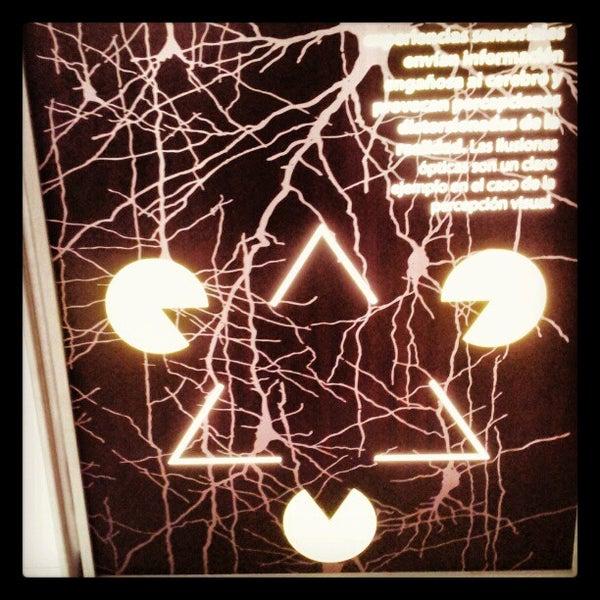 1/8/2013에 Lexs C.님이 Universum, Museo de las Ciencias에서 찍은 사진