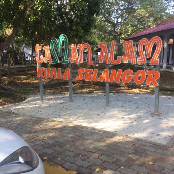 s at Taman Alam Kuala Selangor Park in kuala selangor