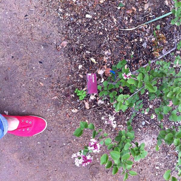 4/24/2013 tarihinde Baby S.ziyaretçi tarafından Descanso Gardens'de çekilen fotoğraf