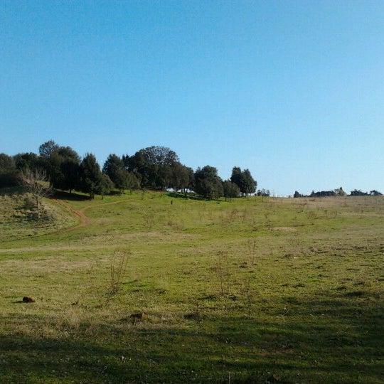 Photo prise au Parco Regionale dell'Appia Antica par Valeria L. le3/4/2013