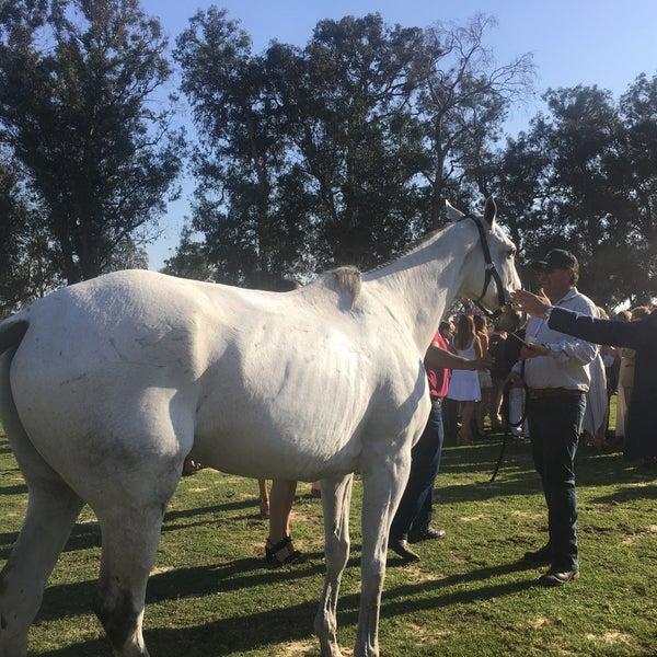 Das Foto wurde bei Veuve Clicquot Polo Classic von Cheryl T. am 10/15/2017 aufgenommen