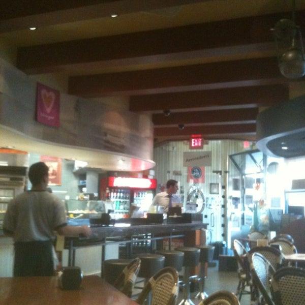 Photos At Amalfi Restaurant Pizzeria Port Washington Ny