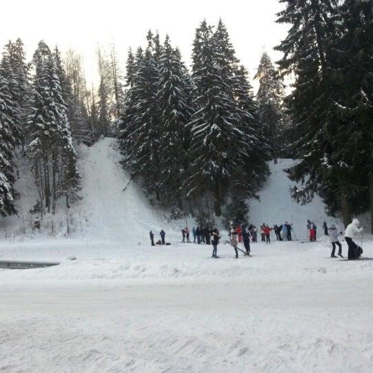 лыжная база сосенка в корытово фото известен ряд вирусов