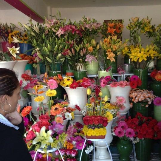 12/14/2012にCarlitos V.がFlorería Flores de Oaxacaで撮った写真