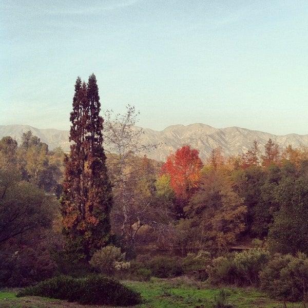 12/9/2012 tarihinde Chris H.ziyaretçi tarafından Descanso Gardens'de çekilen fotoğraf