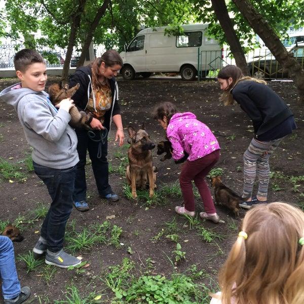 Снимок сделан в Центральная детская библиотека № 14 пользователем Mikhail 7/13/2015