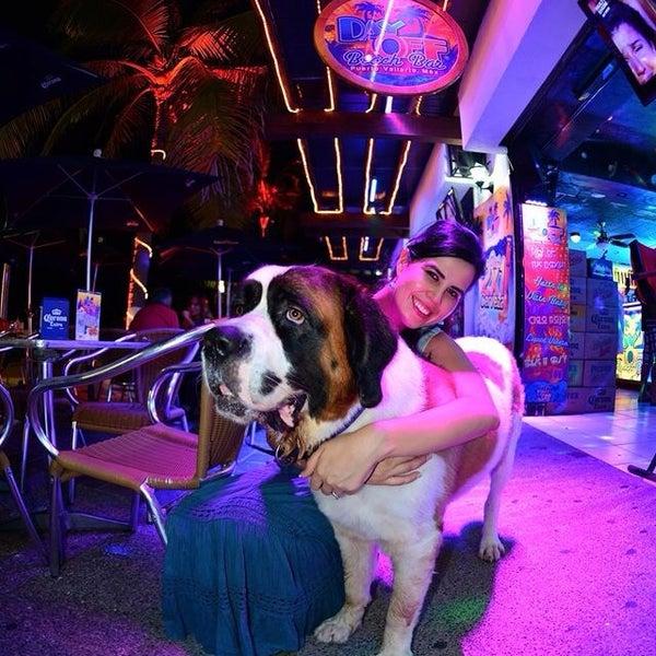 El mejor lugar del mundo donde hasta tu perro favorito se la pasa bien y recibe atención de lujo!! I Love it!!!