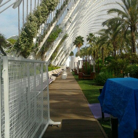 Photos At Terraza Umbracle Lounge In Valencia