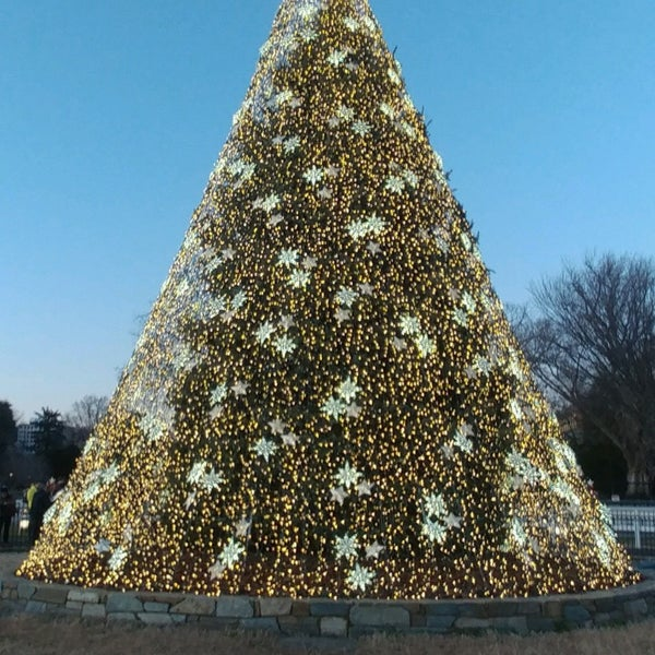2020 National Christmas Tree Photos at National Christmas Tree   Northwest Washington   Ellipse