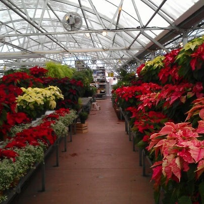 Foto tirada no(a) Nick's Garden Center & Farm Market por Matthew D. em 11/25/2012