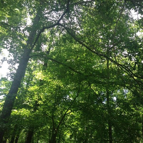 Garden Walk Chattanooga: Reflection Riding Arboretum